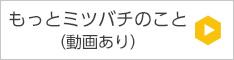 banner_mitsusbachi
