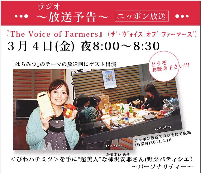 biwa_radio